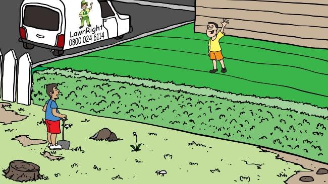 Lawnright lawn treatment service