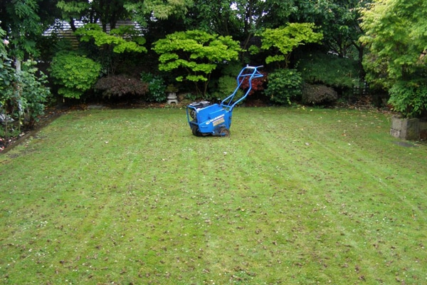 hollow tine aeration in south yorkshire