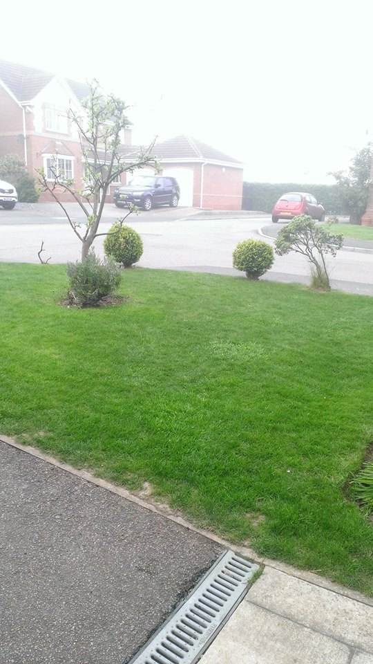 a beautiful lawn by lawnright