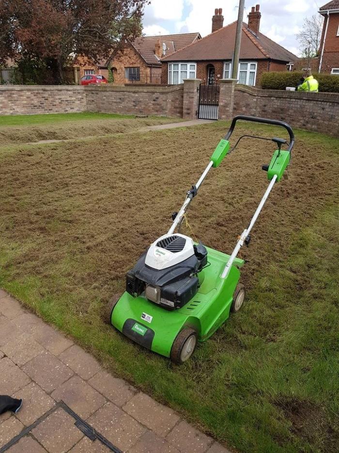lawn scarification