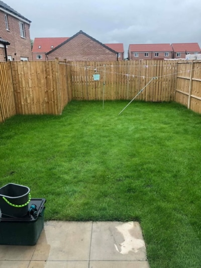 Full lawn renovation part 1